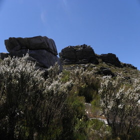 Stirling Range N.P. - Bluff Knoll
